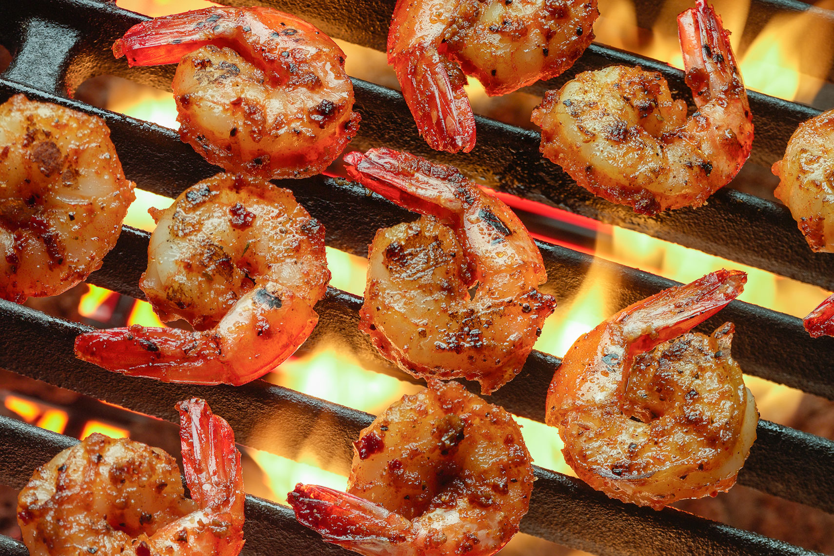 Grilled Shrimp food photo
