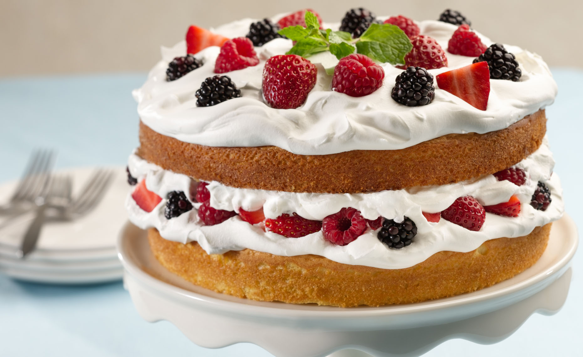 Hood Layer Cakes with Berries Dessert Photo
